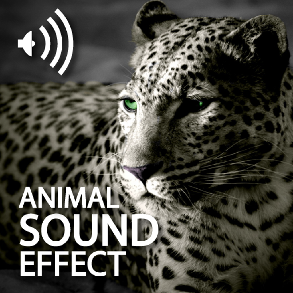 Animal Sounds Effects